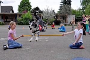 Hund Rusty macht es den Kindern besonders leicht, sich mit einem Hund anzufreunden. Bild: Carsten Düppengießer