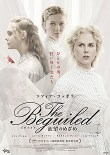 the beguiledビガイルド 欲望のめざめ