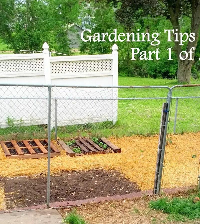 Gardening Tips & Ideas: Part 1 of 2
