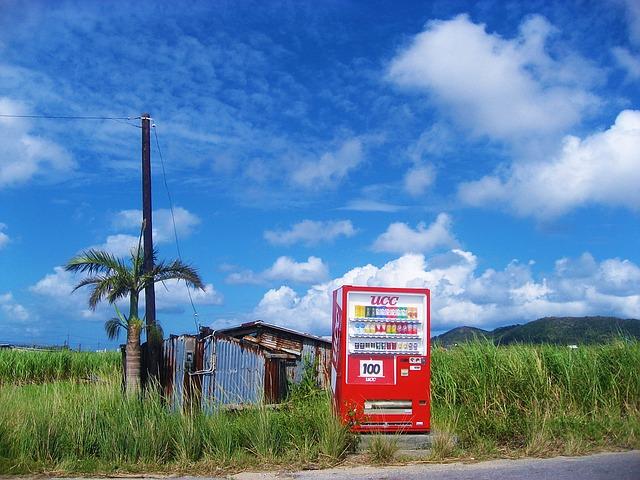 旅行先の石垣島