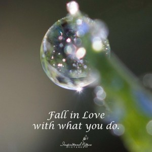 fall-in-love-with-what-you-do