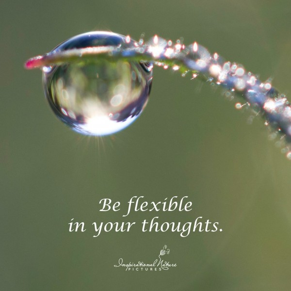 Be flexible in your thoughts.