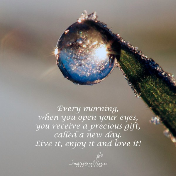 Every morning,when you open your eyes,you receive a precious gift,called new day, love it enjoy it and love it
