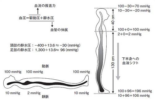起立性低血圧