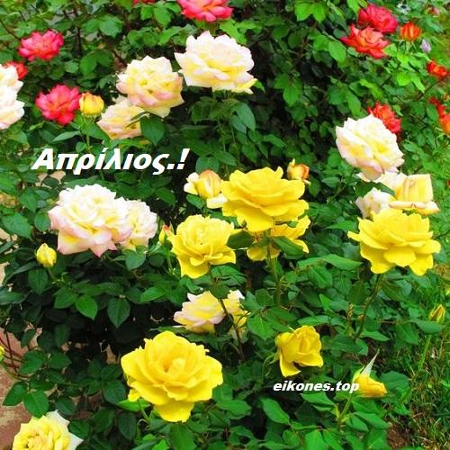 Απρίλιος: Εικόνες για καλό μήνα!-eikones.top