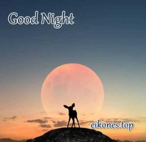 Εικόνες όμορφες για Good Night