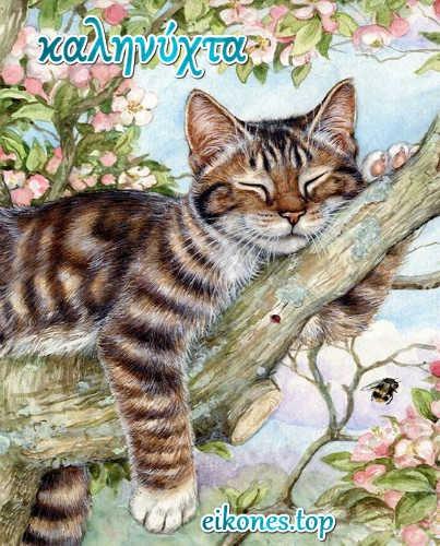 Εικόνες για καληνύχτα με γατάκια…
