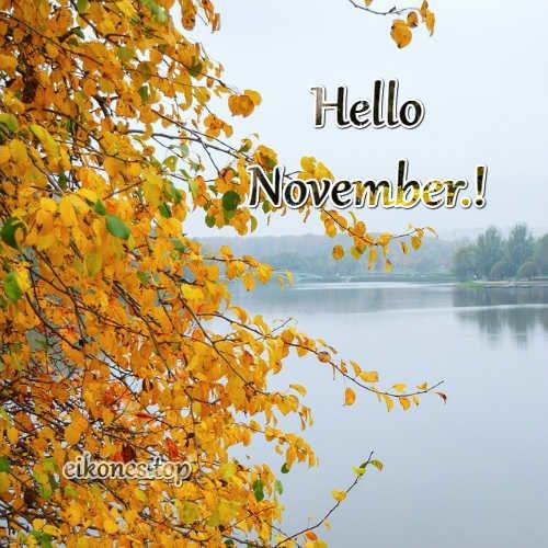 Hello November-eikones.top