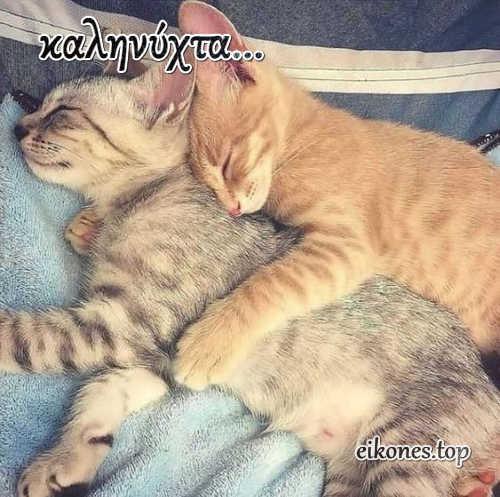 Εικόνες Τοπ για Καληνύχτα.!