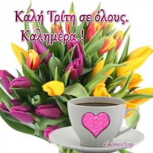 Εύχομαι μια όμορφη Τρίτη σε όλους…!!  Καλημέρα.!