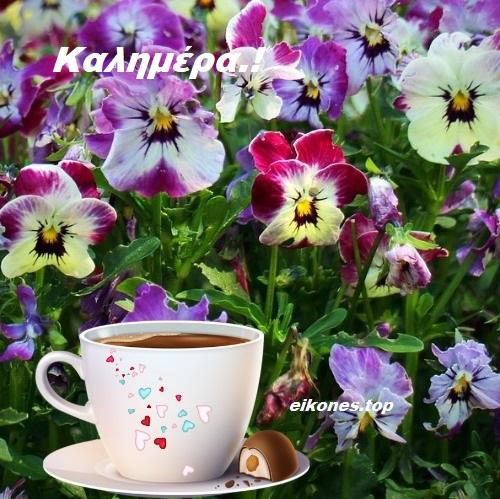 Χρώματα και αρώματα για τις πιο όμορφες καλημέρες.!-eikones.top