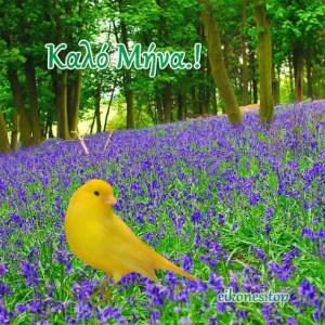 Εικόνες της Φύσης για Καλημέρα-Καλό Μήνα.!