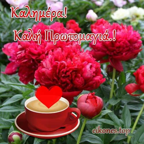 Καλημέρα και Καλή Πρωτομαγιά με Εικόνες Τοπ!