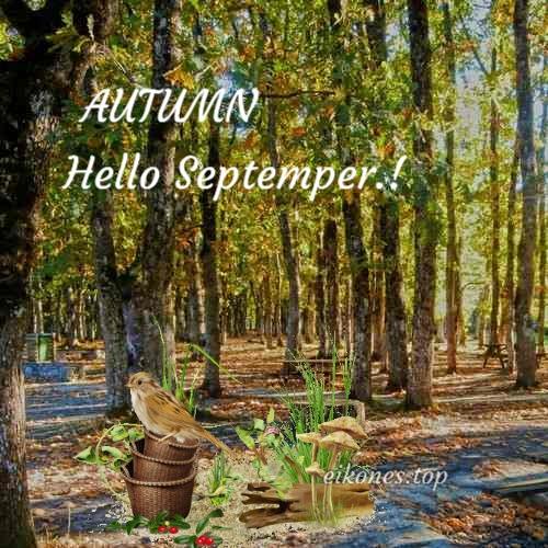 Εικόνες για Welcome Αutumn,Hello Autumn & September.! eikones.top