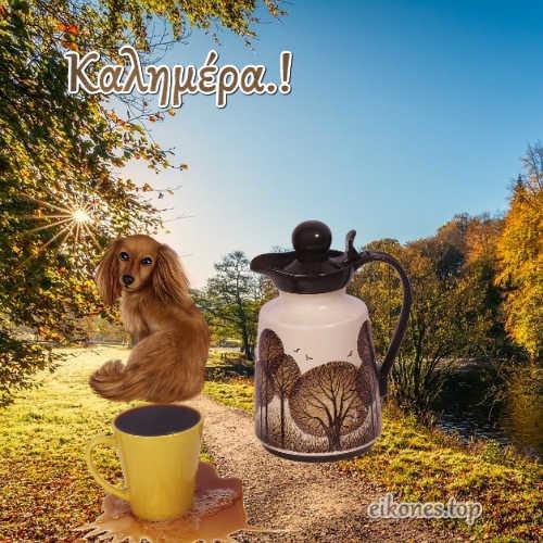 Φθινοπωρινές εικόνες,,, καλημέρα-eikones.top