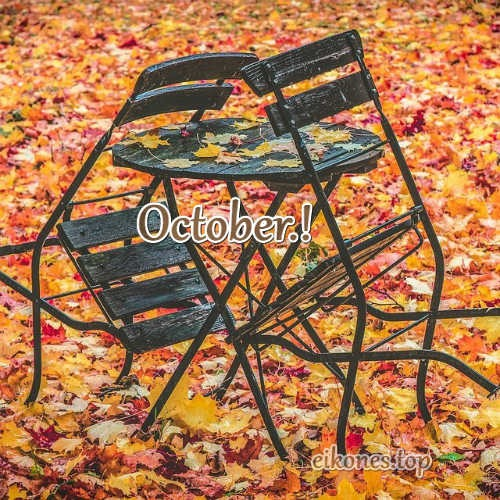 Beautiful autumn pictures for October-eikones.top