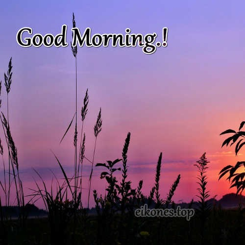 Good Morning-images from the sunrise-eikones.top