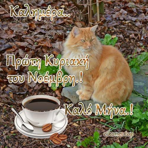 Νοέμβριος 2020: Καλημέρα...Καλή Κυριακή και καλό μήνα-Το eikones.top