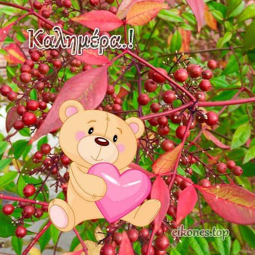 Φθινοπωρινές Καλημέρες με ομορφιές της φύσης.!-eikones.top