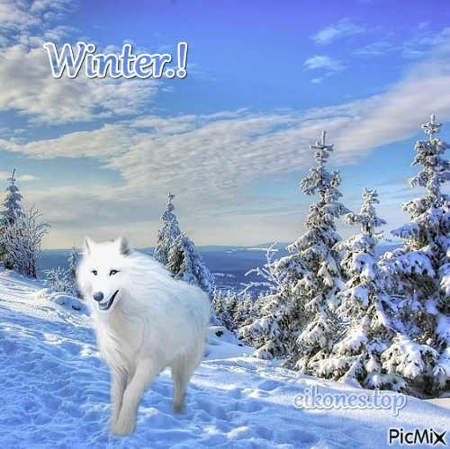 Hello Winter.! Εικόνες Τοπ