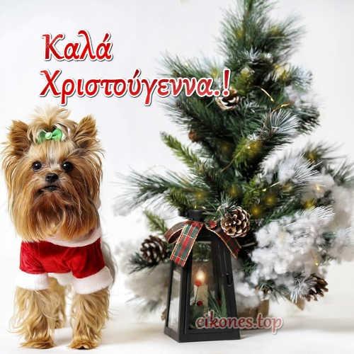 Ευχές Για τα Χριστούγεννα.!-eikones.top