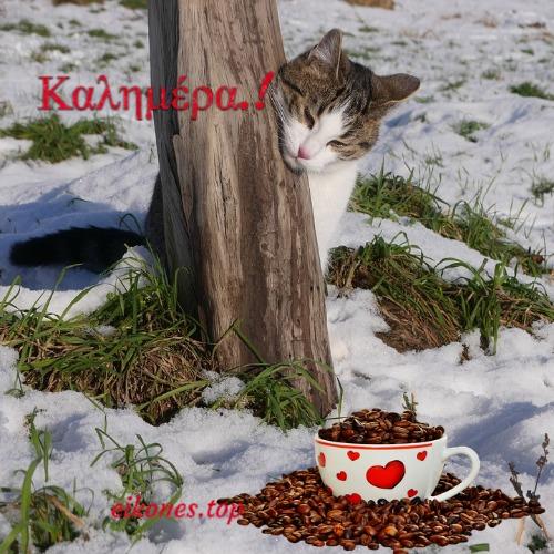 Χιονισμένες Καλημέρες.!eikones.top