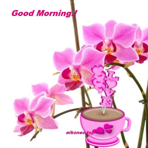 Good Morning Με Εικόνες Της Άνοιξης