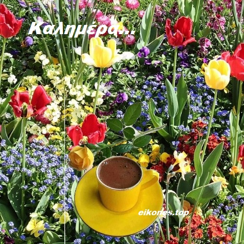 Εικόνες Της Άνοιξης  Για Καλημέρα.!
