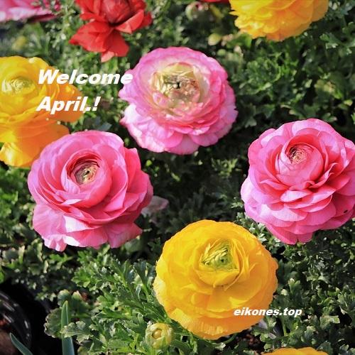 Απρίλιος: Καλημέρα Και Καλό Μήνα Με Εικόνες Τοπ.!
