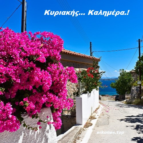 Read more about the article Κυριακής… Καλημέρα.!!!