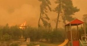 Read more about the article Φωτιά στην Εύβοια – «Χάνεται» η μάχη για το Πευκί – Καίγονται σπίτια