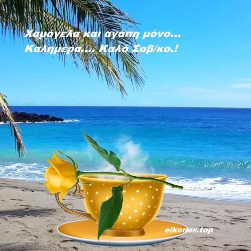Read more about the article Καλό Σαββατοκύριακο σε όλους…Καλημέρα.!