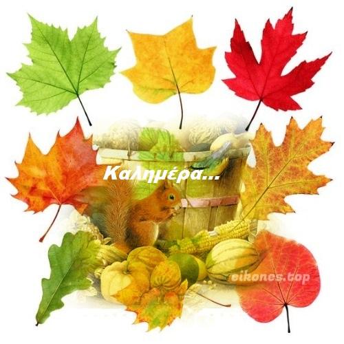 Απλές και κινούμενες φθινοπωρινές εικόνες για καλημέρα.! eikones.top