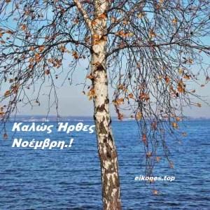 Read more about the article Καλώς Ήρθες Νοέμβρη Με Εικόνες Τοπ. Καλό Μήνα.!