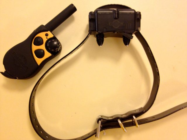 PetSafe shock collar and remote