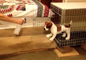 A stuffed brown and white dog is positioned emerging from a dog crate. There is a hand and arm emerging into the photo from the other side. The hand is holding a squirt bottle and it is aimed at Feisty's face.