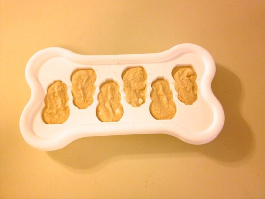 Kong easy freeze tray with peanut butter yogurt filling