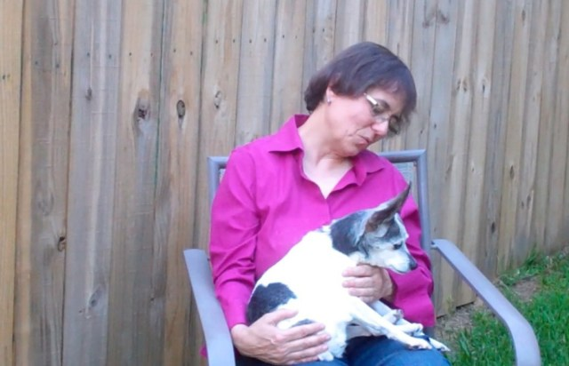 Eileen Anderson and Cricket, a rat terrier with canine cognitive dysfunction