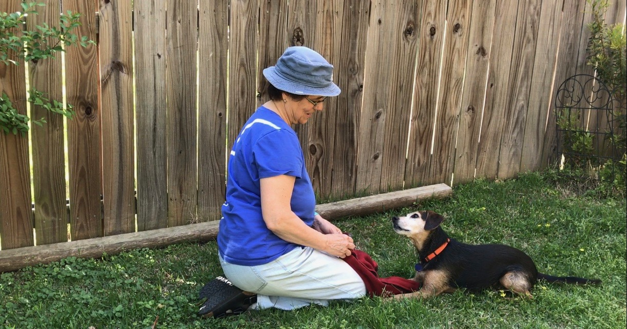 a woman with a hat and a small black dog are gazing at each other, giving their full attention