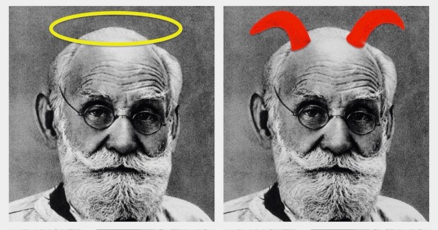 Which Pavlov Is on Your Shoulder? Two photos of Pavlov, side by side, one with a halo and one with devil's horns.