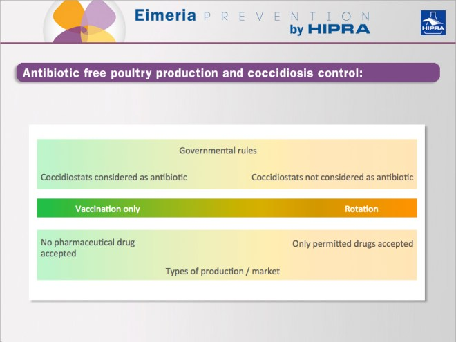 antibiotic-free-poultry-production