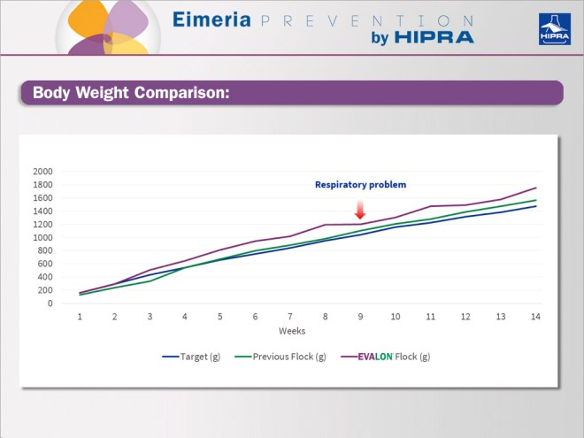 Body weight Comparison - Coccidiosis in Chickens