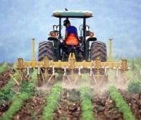 Для фермеров хотят создать отдельную группу налогообложения