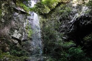 【須崎市・高知の滝巡り】樽の滝