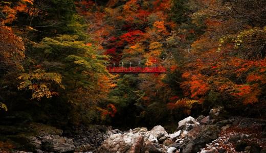 べふ峡|高知有数の紅葉スポット!山一面が紅葉に染まる秋の美しさは格別。