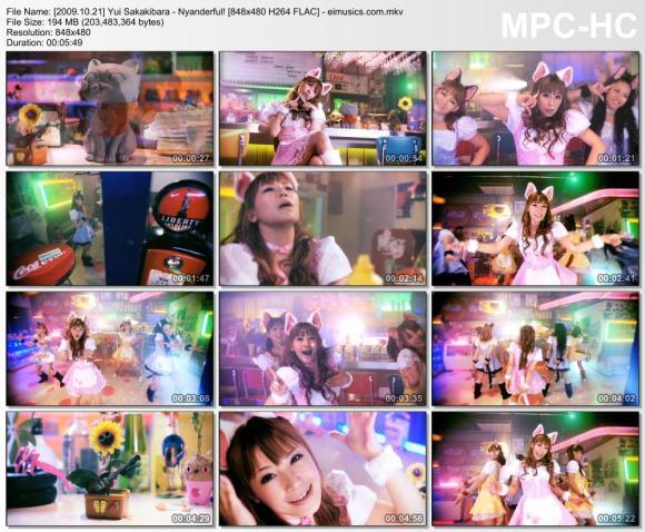 Download Yui Sakakibara - Nyanderful! [480p]   [PV]