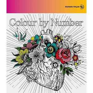 Download MONKEY MAJIK - Colour by Number [Album]