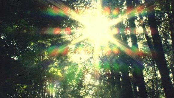 [2012.11.17] Utada Hikaru - Sakura Nagashi (DVD) [480p]   - eimusics.com.mkv_snapshot_01.22_[2016.01.02_11.16.19]