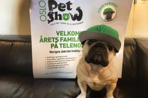 Oslo Pet Show