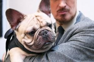 Baron von bulldog